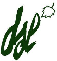dsl_logo